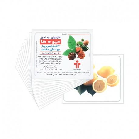 کارت دید آموز میوه ها - انتشارات آموزش