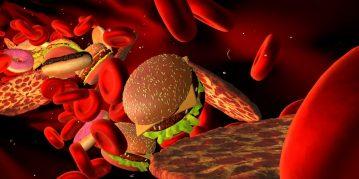 چربی خون و درمان آن در طب سنتی